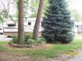 One of our well maintained campsites.